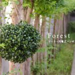 ソーラー充電式ハンギングライト「Forest(フォレスト)」2,700 yen