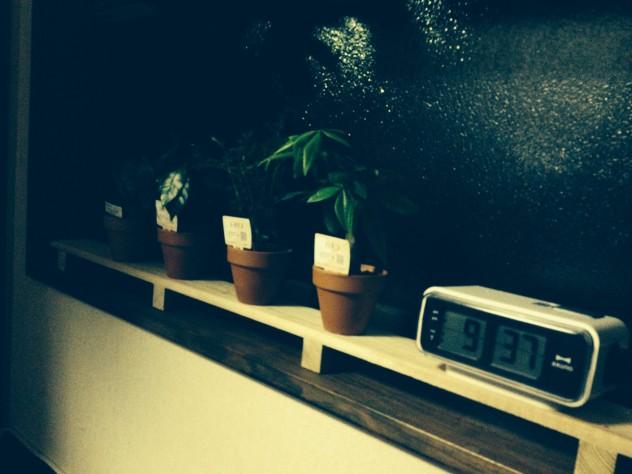 植物とうまく調和